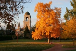 Trees in front of Buchtel Tower at University of Denver.