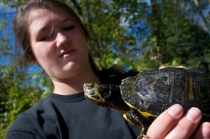 A college student holding a pet turtle.