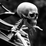 A black and white photo of a skeleton.