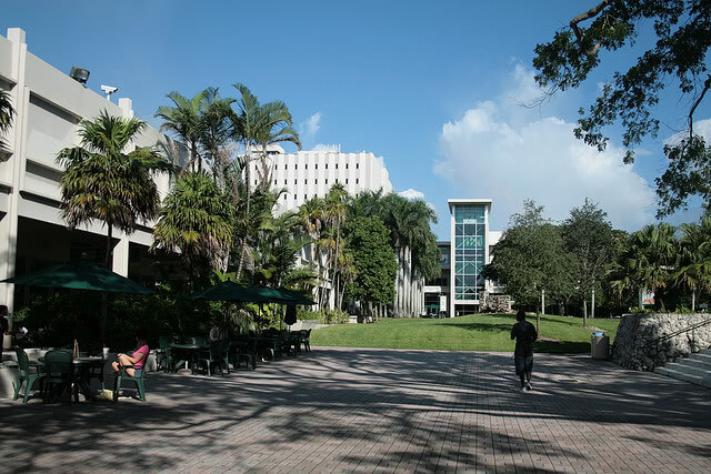 University of Miami - Best Colleges in the Southeast