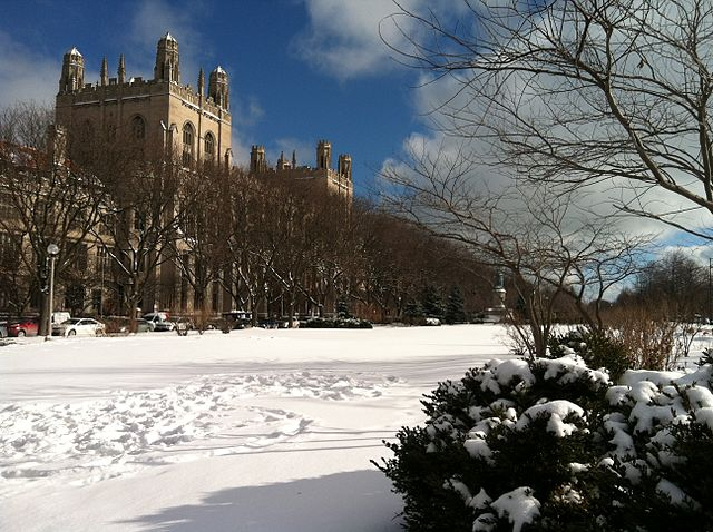 Harper Memorial Library of the University of Chicago in the background.