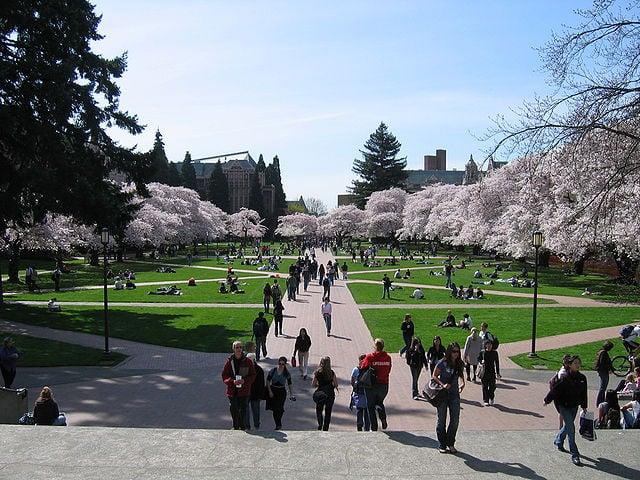 University of Washington-Seattle - Best Large Colleges