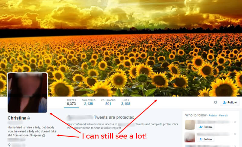 """Twitter screenshot with arrow pointing to blurred profile photo, bio and field of sunflowers cover photo. Overlay text that says """"I can still see a lot."""""""