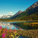Chugach National Forest in Alaska.