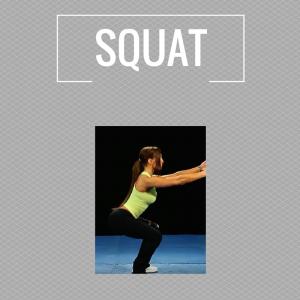 Exercises - squat