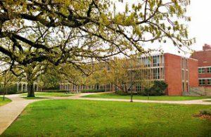 Carleton College - Best Medium-sized Colleges