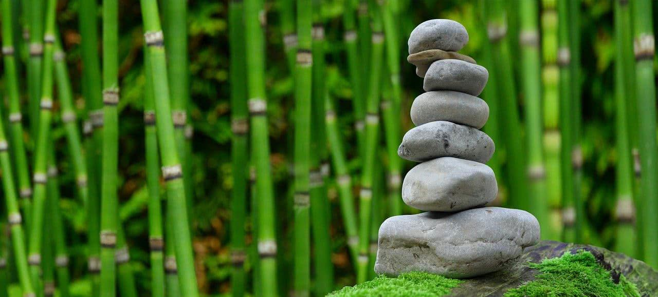 Rocks stacked on top of each other with a bamboo grove in the background.