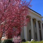 Spring admission isn't as common as fall admission, but is still widely available.