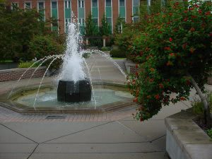 A water fountain at the gardens at Michigan State University.