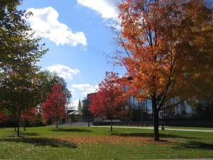 Top 25 Best Liberal Arts Colleges - Lafayette College