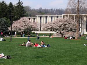Hidden Gems in the Southeast - University of North Carolina at Asheville