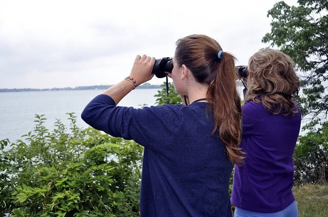 Search for scholarships just like you search for birds with binoculars