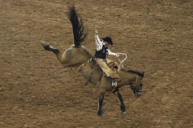 Horseback riding.