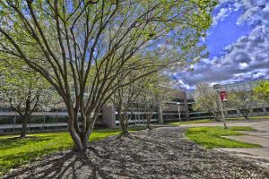 Hidden Gems in the Midwest - Pittsburg State University