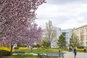 Spring at Brigham Young University – Provo.