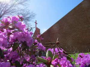 Hidden Gems in the Northeast - Wheeling Jesuit University