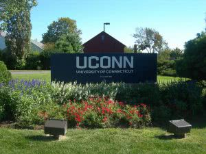 The University of Connecticut campus entrance with flowers around it.