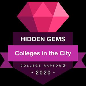 Hidden gems - colleges in cities