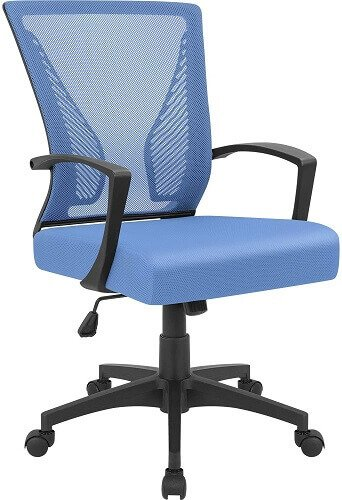 Furmax office chair. Clicking will lead to its Amazon page.